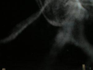 Nebel Wesen (32)